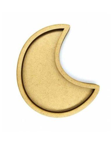 Shaker luna